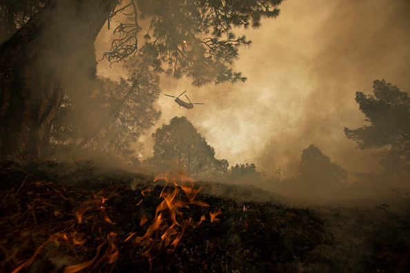 Sequoia National Forest「French Fire In California Burns Almost 15,000 Acres」:写真・画像(14)[壁紙.com]