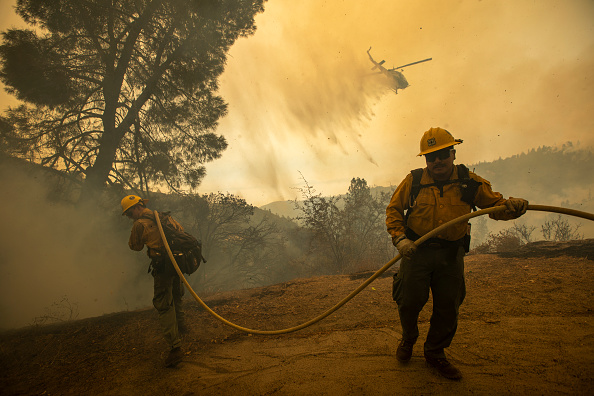 Sequoia National Forest「French Fire In California Burns Almost 15,000 Acres」:写真・画像(12)[壁紙.com]