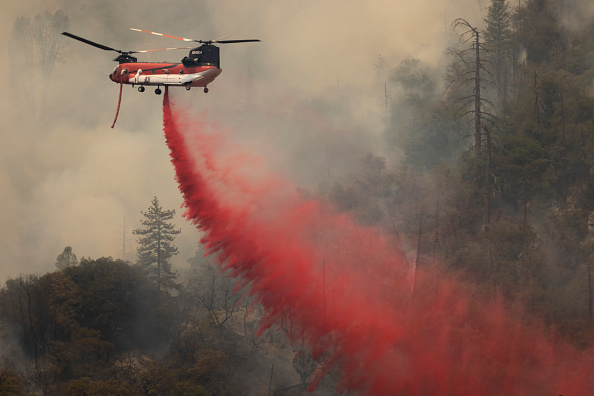 Sequoia National Forest「French Fire In California Burns Almost 15,000 Acres」:写真・画像(15)[壁紙.com]