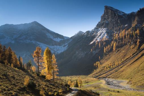 Lech Valley「 golden autumn in tirol」:スマホ壁紙(9)