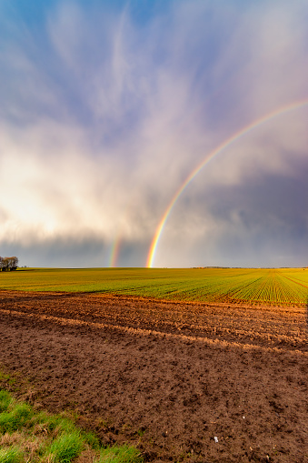 East Lothian「UK, Scotland, Double rainbow over agricultural field」:スマホ壁紙(7)
