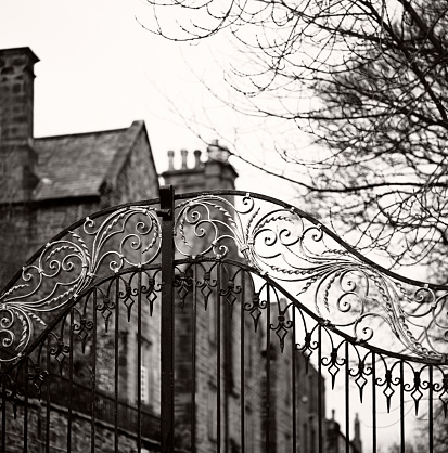 Wrought Iron「Old gate, Durham - Traditional Anglosaxon gate, closed, with mansion」:スマホ壁紙(7)