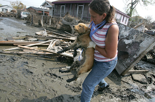Recovery「Hurricane Katrina Aftermath - Day 13」:写真・画像(12)[壁紙.com]