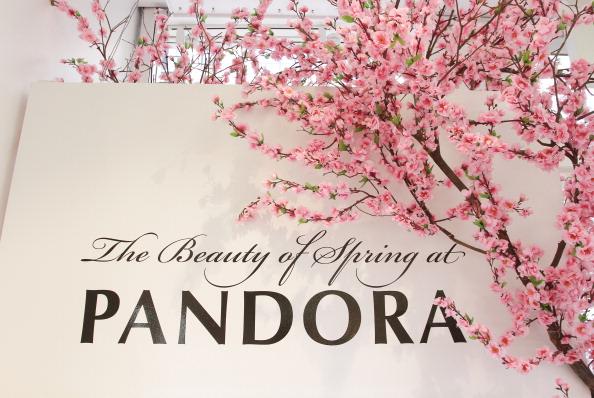 ジュエリー パンドラ「PANDORA And Lucky Celebrate The Grand Opening Of PANDORA 494 Broadway」:写真・画像(9)[壁紙.com]