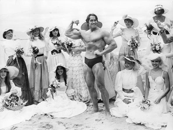 International Cannes Film Festival「Arnold Schwarzenegger」:写真・画像(9)[壁紙.com]