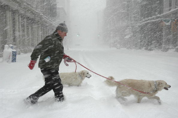 Blizzard「Major Nor'Easter Hits East Coast」:写真・画像(15)[壁紙.com]