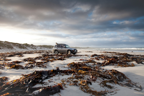 Seaweed「A surfer parked on the beach, getting ready for a surf at British Admiral beach, on King Island, Australia」:スマホ壁紙(12)