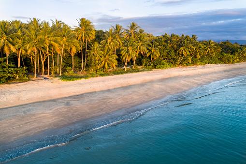 Queensland「Australia, Queensland, Palm trees on coastline」:スマホ壁紙(7)