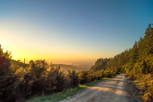 Dirt Road「Australia, Queensland, mountain path at sunrise」:スマホ壁紙(18)
