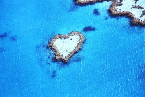 Pacific Ocean「Australia, Queensland, Great Barrier Reef, Heart Reef, aerial view」:スマホ壁紙(10)