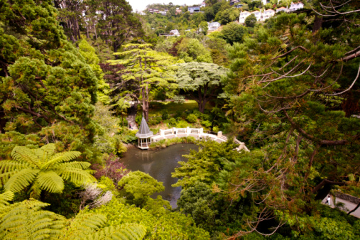 Surrounding「Looking down on a pond and gazebo surrounded by trees, Botanic Gardens.」:スマホ壁紙(14)