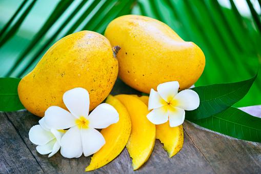 Sri Lanka「Ripe mango」:スマホ壁紙(16)