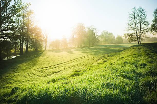 Beautiful nature:スマホ壁紙(壁紙.com)