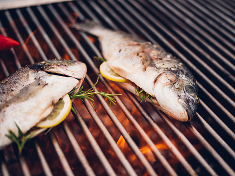 Char-Grilled「Fish grilling on a barbecue with lemon slices and rosemary」:スマホ壁紙(14)