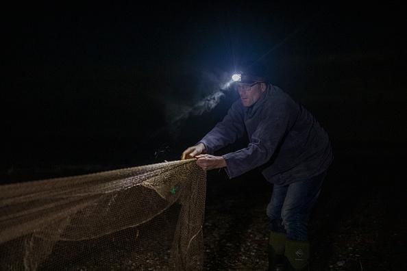 Cannon Beach「Conservationists Track Shorebird Populations On East Anglia Coast」:写真・画像(14)[壁紙.com]