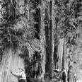 アレクサンダー諸島壁紙の画像(壁紙.com)
