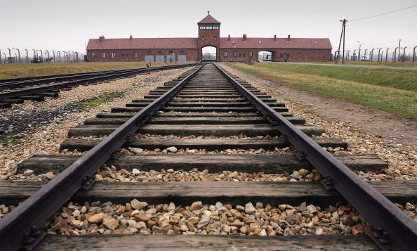Rail Transportation「Preview For Sixtieth Anniversary Of The Liberation Of Auschwitz」:写真・画像(17)[壁紙.com]