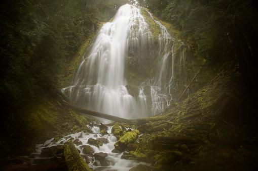 ウィラメット国有林「Proxy Falls」:スマホ壁紙(11)