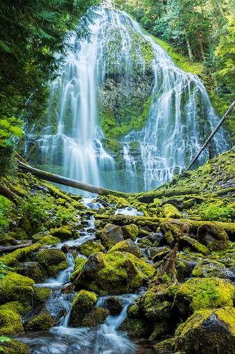 ウィラメット国有林「近接の滝、ウィルメット国立森林公園、セントラルオレゴン(垂直)」:スマホ壁紙(0)