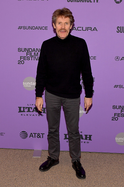 "Sundance Film Festival「2020 Sundance Film Festival - ""The Last Thing He Wanted"" Premiere」:写真・画像(11)[壁紙.com]"