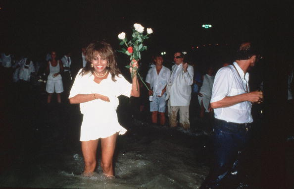 Rio「Tina Turner in the sea」:写真・画像(18)[壁紙.com]