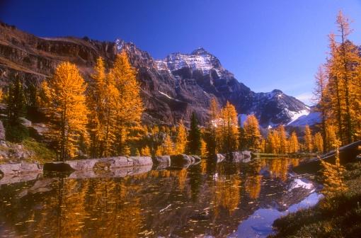 Yoho National Park「Breathtaking mountain scenery」:スマホ壁紙(18)
