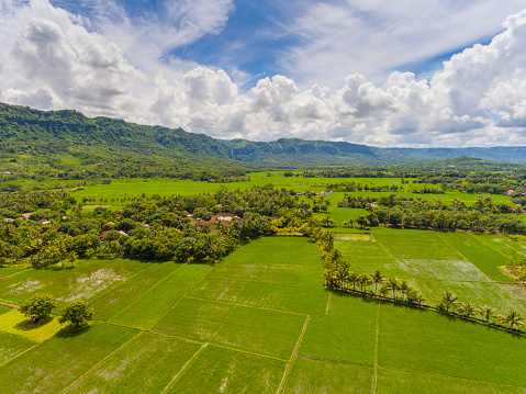 Superb view「Breathtaking scenery of Ciletuh valley」:スマホ壁紙(6)