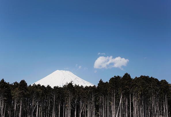 Mount Fuji「Scene Of Japan」:写真・画像(15)[壁紙.com]