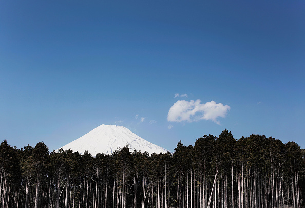 富士山「Scene Of Japan」:写真・画像(2)[壁紙.com]