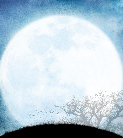 Moon「Colony Of Bats And Bare Tree Silhouetted Against Rising Full Moon」:スマホ壁紙(19)