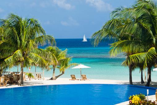 Central America「Tropical Beach Resort Pool」:スマホ壁紙(9)