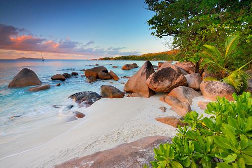 East Africa「Tropical beach Anse Lazio」:スマホ壁紙(11)