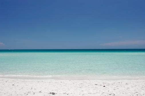 Miami Beach「トロピカルビーチ」:スマホ壁紙(6)