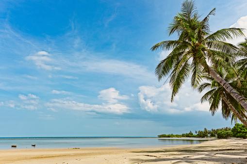 Thai Culture「tropical beach, ko samui, thailand」:スマホ壁紙(13)