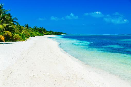 Water's Edge「Tropical beach at Canareef Resort Maldives, Herathera island, Addu atoll」:スマホ壁紙(13)