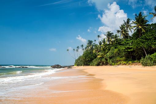 Sri Lanka「Tropical beach, Wellamadama, Matara, Southern Province, Sri Lanka」:スマホ壁紙(2)