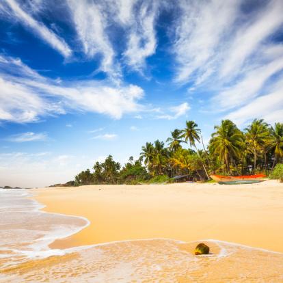 Sri Lanka「Tropical Beach of Sri Lanka」:スマホ壁紙(14)