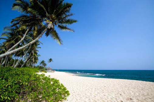 Sri Lanka「tropical beach Sri Lanka」:スマホ壁紙(3)