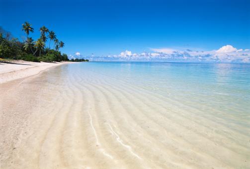 楽園「Tropical beach」:スマホ壁紙(7)