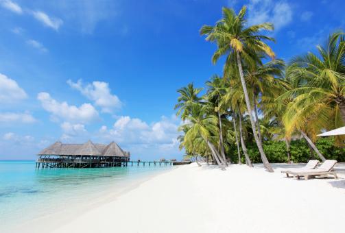 ビーチ「デッキチェアのあるトロピカルなビーチ、水上バンガローは、」:スマホ壁紙(13)