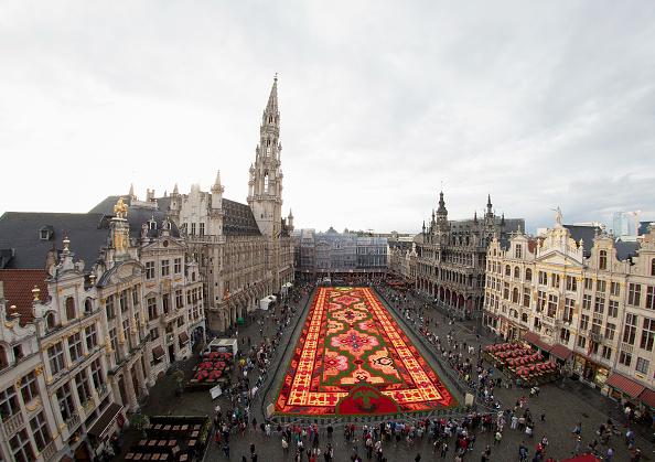 Brussels-Capital Region「Flower Carpet 2014 In Brussels」:写真・画像(12)[壁紙.com]
