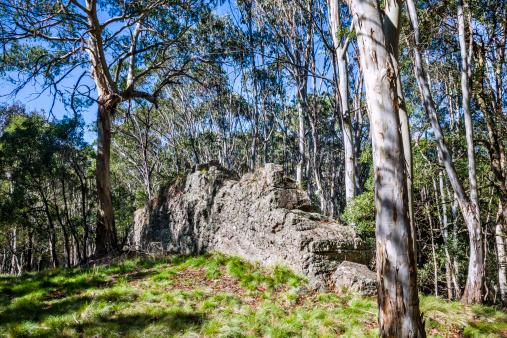 Basalt「'The Walls' basalt outcrop」:スマホ壁紙(6)