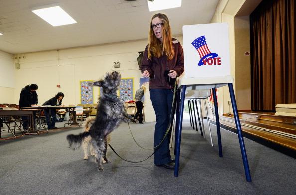 ナッツ類「Mayoral Election Held In Los Angeles」:写真・画像(17)[壁紙.com]