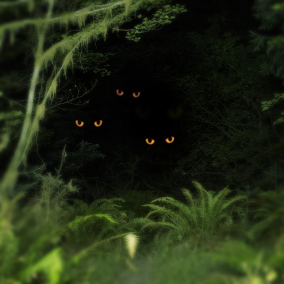 Focus On Background「Creatures peering out from forest, night (Digital Composite)」:スマホ壁紙(14)