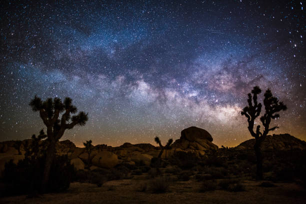 Milky Way in the desert:スマホ壁紙(壁紙.com)