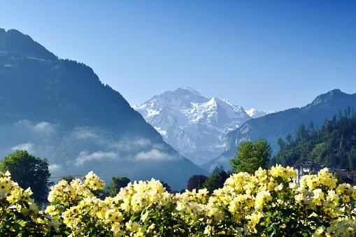 European Alps「Alps at Morning, Switzerland」:スマホ壁紙(1)