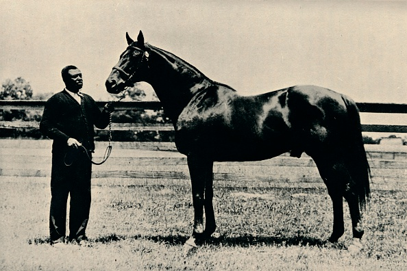 Horse「Thoroughbred racehorse, Man O' War, c1920.」:写真・画像(13)[壁紙.com]