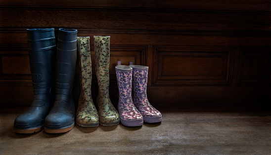 Parent「Three pairs of family Wellington boots」:スマホ壁紙(11)