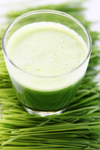 Vegetable Juice「wheat grass juice」:スマホ壁紙(9)