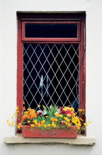 Isle of Man「Flowers growing in window box of a house, Cregnesh, Isle of Man, British Isles」:スマホ壁紙(0)